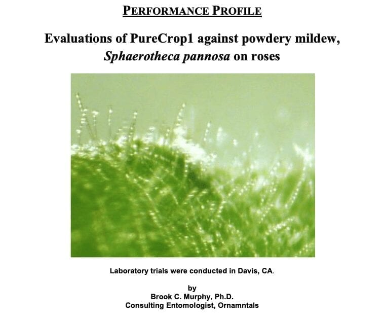 Cover Shot of Powdery mildew study