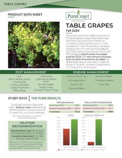 Table Grapes PDF side 1