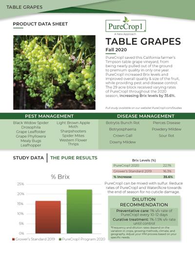 Table Grapes PDF side 2